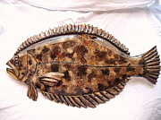 Living Waters Reliefs - Wooden Winter Flounder by Lisa Ruggiero