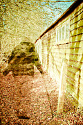 Ghostly Barn Photos - Woodland ghost by Tom Gowanlock