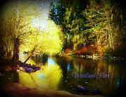 Deahn      Benware - Woodland Park