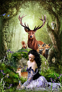 Bluejay Digital Art Posters - Woodland Wonders Poster by Julie L Hoddinott