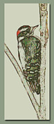 Woodpecker Mixed Media - Woodpecker Design 1 by Debra     Vatalaro