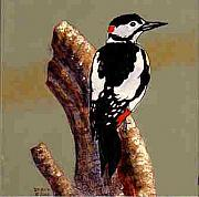 Dy Witt - Woodpecker