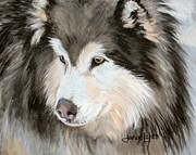 Sled Dog Framed Prints - Woolly Malamute Framed Print by Janae Lehto