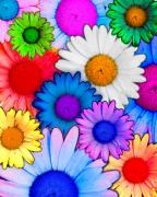 Colorful Art Digital Art - Woopsie Daisies by Dolly Sanchez