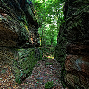 Ohio Prints - Wordens Ledges Print by Dale Kincaid