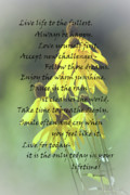 Love Poetry Posters - Words For My Teen Poster by Cathy  Beharriell