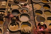 Artists And Artisans Art - Workers In The Tanneries Of Fez Soak by Annie Griffiths