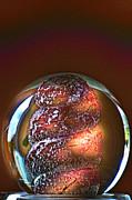 World In A Glassball 01 Print by Li   van Saathoff