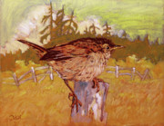 Pacific Northwest Painting Posters - Wren Poster by Rob Owen