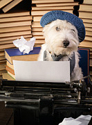 Westie Puppy Prints - Writers Block Print by Edward Fielding