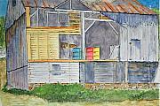 Larry Wright - Wyeth Country Anatomy...