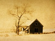 Wyoming Homestead Print by Barbara Henry