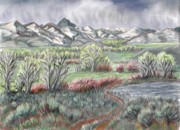 Mountain Valley Drawings - Wyoming Spring by Dawn Senior-Trask