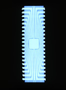 Processor Prints - X-ray Of A Silicon Chip From A Teletext Board Print by D. Roberts