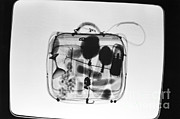 Airline Industry Prints - X-ray Of Suitcase Print by Science Source