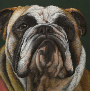 Cute Dogs Pastels - Ya wanna piece a me by Norm Holmberg