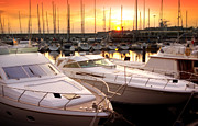 Yellow Line Framed Prints - Yacht Marina Framed Print by Carlos Caetano