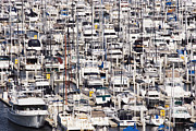 Docked Sailboats Prints - Yacht Marina Print by Jeremy Woodhouse