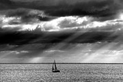 Beach. Black And White Posters - Yacht Sailing Just Off Brighton Beach Poster by Alan Mackenzie