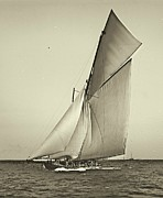 Padre Art Photos - Yacht Shamrock Racing Americas Cup 1899 by Padre Art