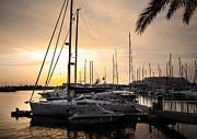 Anchored Posters - Yachts at Sunset Poster by Carlos Caetano