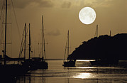 Sea Moon Full Moon Framed Prints - Yachts Framed Print by David Nunuk