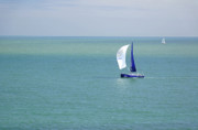Yachts Sailing In Ventnor Bay Print by Rod Johnson