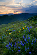 Hillside Art - Yakima River Canyon Sunset by Mike  Dawson