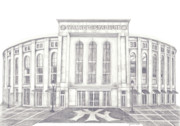 New York Baseball Parks Drawings Prints - Yankee Stadium Print by Juliana Dube