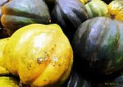 Acorn Squash Posters - Yankee Staple Poster by RC DeWinter