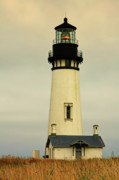 Gloomy Framed Prints - Yaquina Head Lighthouse - Newport OR Framed Print by Christine Till