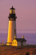Yaquina Head Lighthouse Photos - Yaquina Head Lighthouse at Sunset by Alvin Kroon