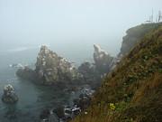 Glenna McRae - Yaquina Headlands towards Cape Foulweather
