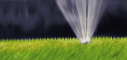 Watering The Plants Prints - Yard Sprinkler 1 - Abstract Realism Print by Steve Ohlsen