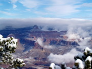 Yavapai Point Winter Print by Carrie Putz