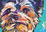 Modern Dog Art Framed Prints - Yay Yorkie  Framed Print by Lea
