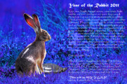 Rabbit Digital Art Metal Prints - Year of the Rabbit 2011 . blue Metal Print by Wingsdomain Art and Photography
