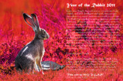 Rabbit Digital Art Metal Prints - Year of the Rabbit 2011 . Red Metal Print by Wingsdomain Art and Photography