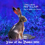 Rabbit Digital Art Metal Prints - Year of the Rabbit 2011 . Square Blue Metal Print by Wingsdomain Art and Photography