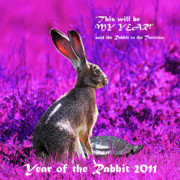 Rabbit Digital Art Metal Prints - Year of the Rabbit 2011 . Square Magenta Metal Print by Wingsdomain Art and Photography