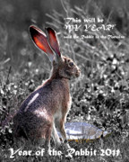 Rabbit Digital Art Metal Prints - Year of the Rabbit 2011 . Vertical bw Metal Print by Wingsdomain Art and Photography