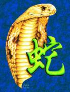 Reptiles Drawings - Year of the Snake by Sheryl Unwin