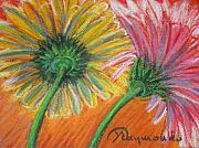 Gerbera Pastels - Yellow and pink daisies by Yasemin Raymondo