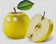 Granny Prints - Yellow Apples Print by Cheryl Young
