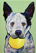 Pat Saunders-white Dog Paintings - Yellow Ball by Pat Saunders-White