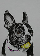 Canine Mixed Media Prints - Yellow Ball  Print by Susan Herber