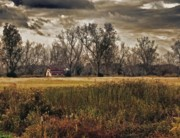 Rural Scenes Digital Art Originals - Yellow Barn and the Field by Michael Thomas