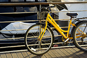 Harbor Photos - Yellow Bicycle by Carlos Caetano