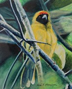 Yellow Leaves Pastels Prints - Yellow Bird Print by Terri Thompson