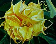 Datura Painting Prints - Yellow Blast Print by Julie Pflanzer